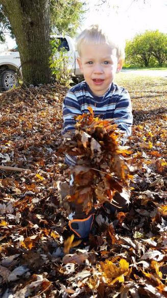 picking up fallen leaves is a big job